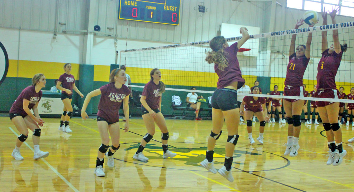 Arabians take to the court with scrimmages