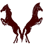 Warhorse and Arabian XC running strong, first meet Aug. 21 in Devine