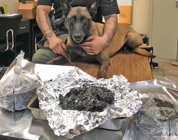 Search yields black tar heroin hidden inside fire extinguisher