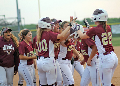 Arabian softball is 6-1 in district