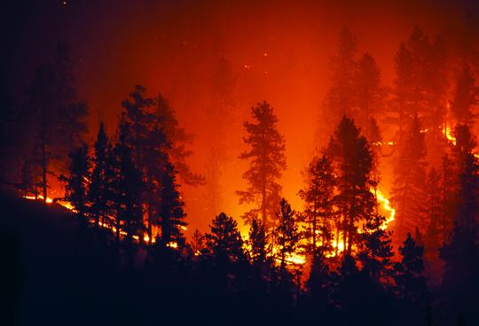 Brush fires being left unattended in new Bigfoot neighborhoods