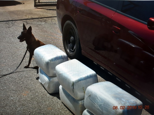 K-9 finds six bundles of drugs near Moore – The Devine News
