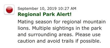Mountain lion spotted at local park